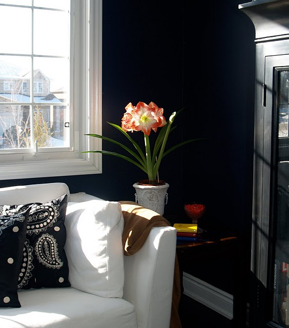 Ralph Lauren Paint Creative Living Design For The Apartment Condo Townhome Lifestyle